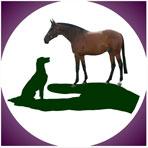 equine-logo