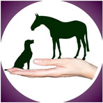 owner-logo